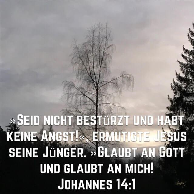 Bibelvers aus Johannesevangelium 14,1 auf Bild mit Birke ohne Laub