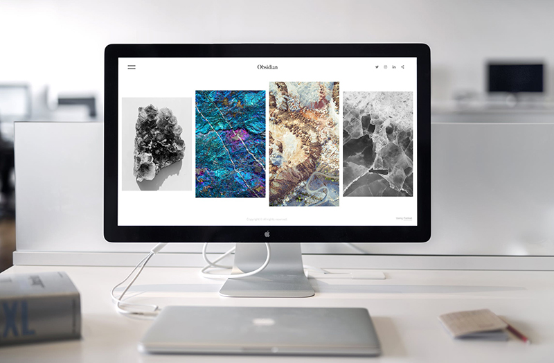 squarespace-web-design-Snapdragon