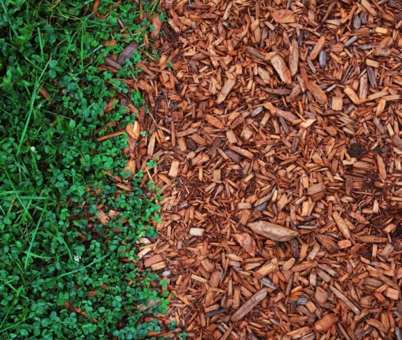 Get-to-Know-the-General-Types-of-Mulch