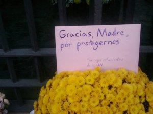 Flores ante la Ermita