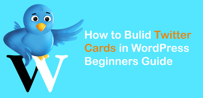 How to Bulid Twitter Cards in WordPress Beginners Guide