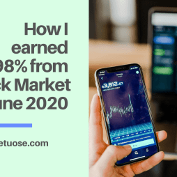 How I earned 4.98% from Stock Market in June 2020
