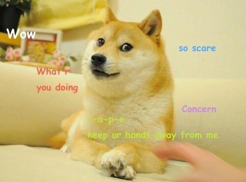 Das Doge Meme Beispiel
