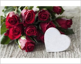 Stampa su tela- rose rosse