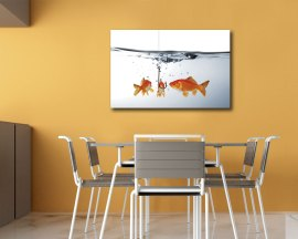 Stampa su tela - tre pesci rossi
