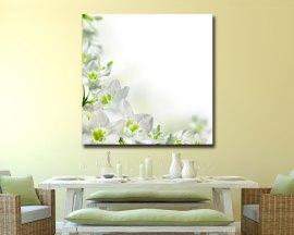 Stampa su tela - candidi fiori bianchi