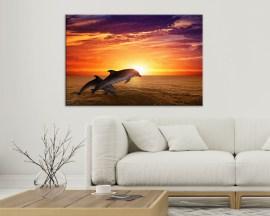 Stampa su tela-delfini al tramonto