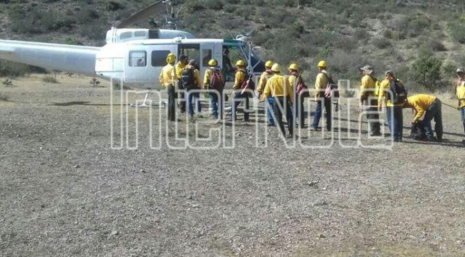 CONTINÚAN COMBATIENDO INCENDIO FORESTAL EN LA SIERRA DE ZAPALINAME, COAHUILA.