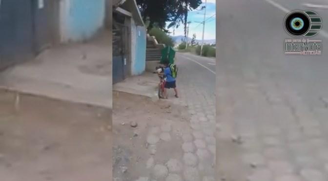 NIÑO CUIDA A SU PERRO PROTEGIÉNDOLO CON UN CUBREBOCAS.