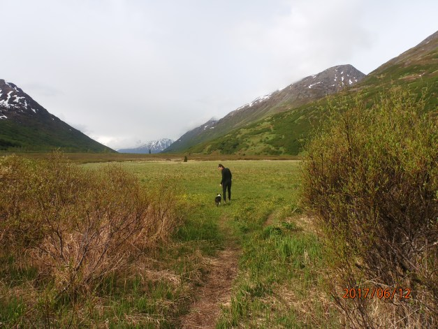 10 Alaska Hiking Trails Near Anchorage That Are Dog Friendly