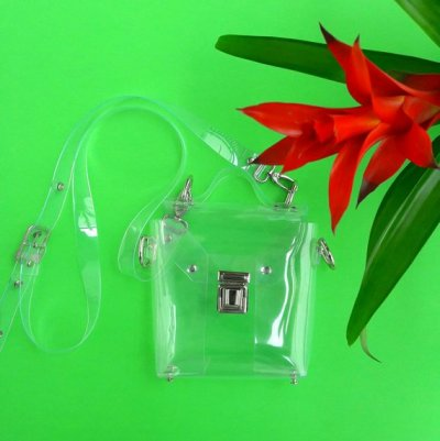 Here are our picks for cute, clear crossbody purses!