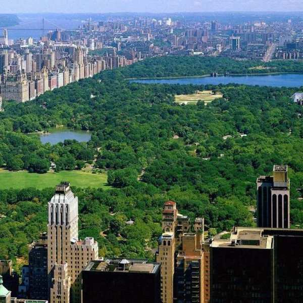 A sky view of central park