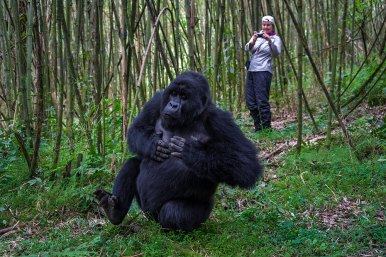 Wilderness-Rwanda-01