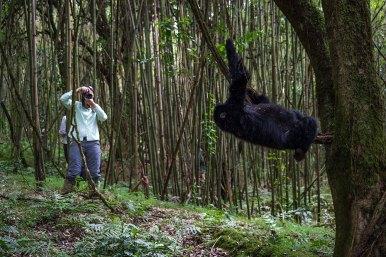 Wilderness-Rwanda-02