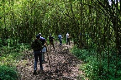 Wilderness-Rwanda-04
