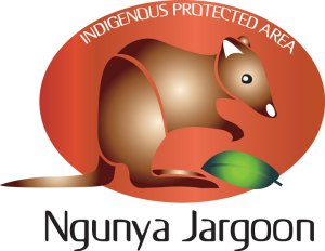Ngunya Jargoon Logo Design