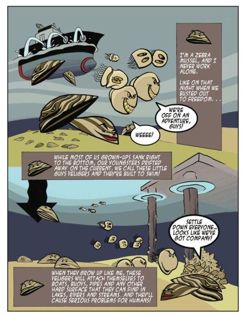 Invasive Species Awareness - Zebra Mussel Cartoon
