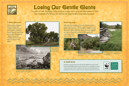 Big Bend Ranch State Park - Losing Our Gentle Giants Panel