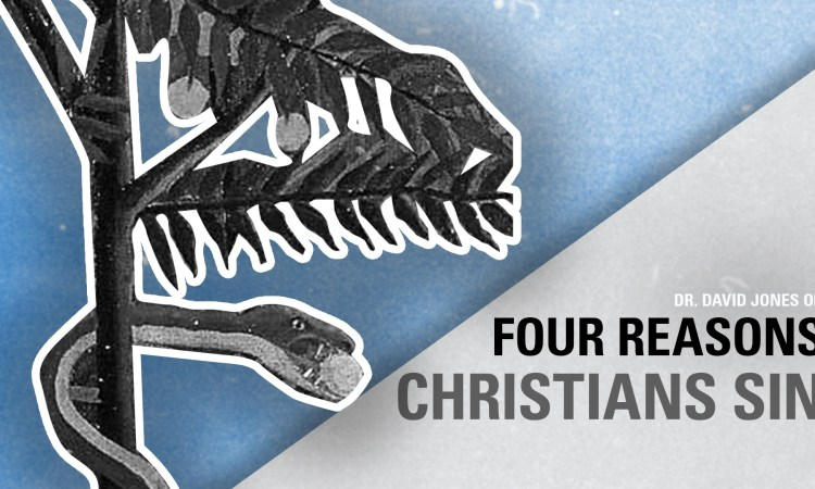 4 reasons Christians sin