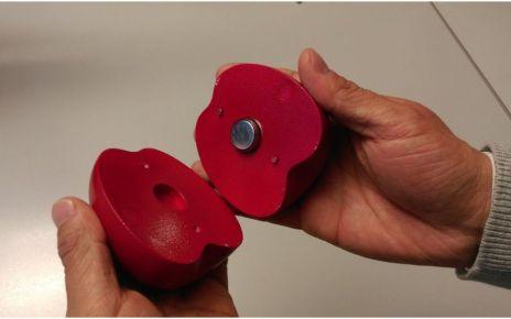 95285795 fruchtsensor - Fruit-shaped sensor 'can improve freshness'