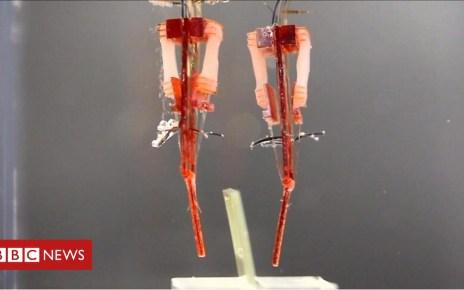 101973792 p069rhhj - Robotic fingers flex their human muscles
