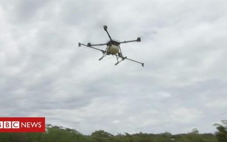 102230423 p06c7bq1 - Drones to battle Colombian cocaine crop