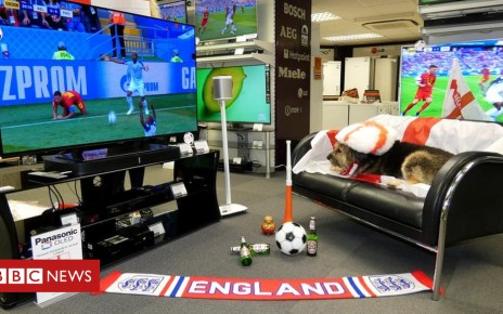 102469123 woolacotts1 - World Cup: Electrical shops to pay £200,000 if England win
