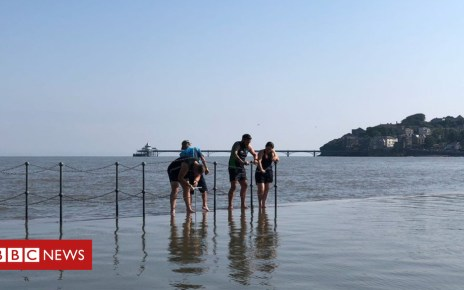 102526001 0f9dcda3 cd2a 4509 96a5 e9aca7437bf0 - Dog poo in Clevedon's Marine Lake causes ear infections
