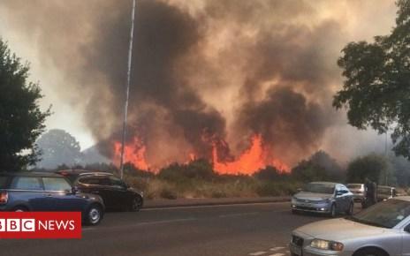 102534904 11 - Wanstead Flats fire: Crews 'praying for rain' amid heatwave