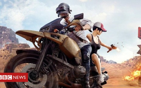 102608442 d3c - PUBG game apologises for 'offensive mask'