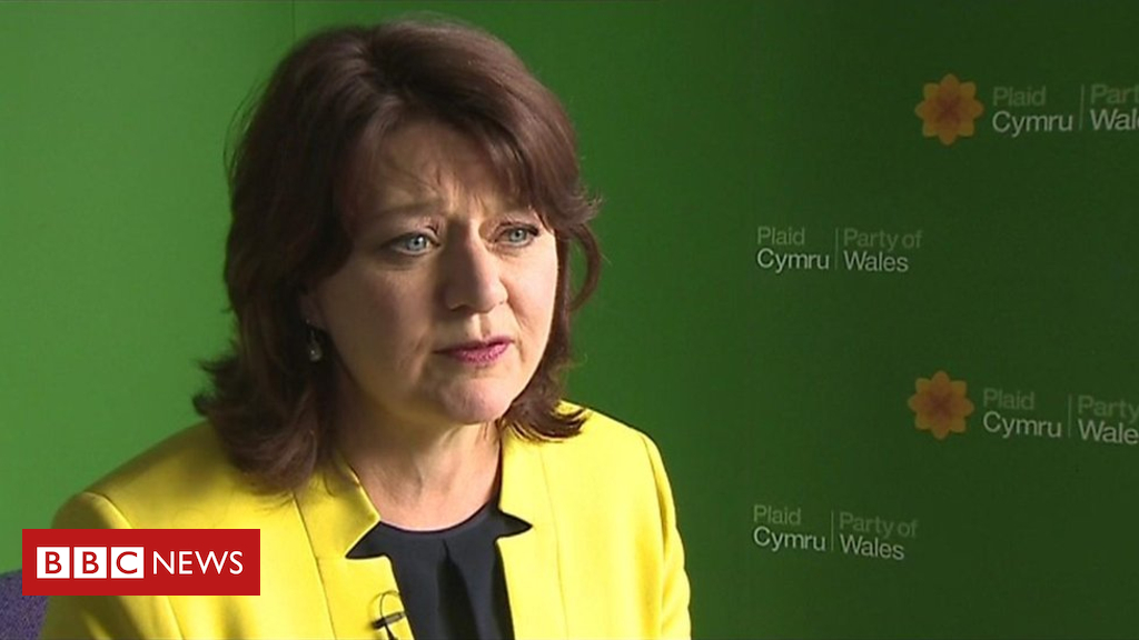 100553292 p06264ry - Plaid Cymru's Leanne Wood 'angry' over her lack of Welsh