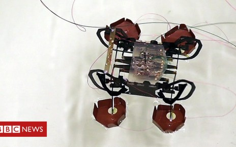 102784930 p06g8btb - Harvard's robotic cockroach could come to the rescue