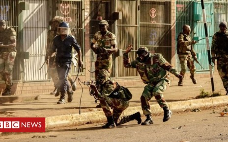 102821548 zim laughingsoldier - Zimbabwe police 'hunt for opposition MDC officials'