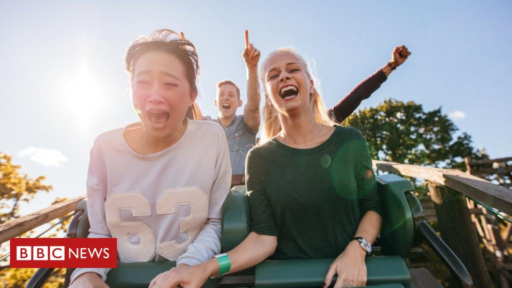 103417085 rollercoaster - Ig Nobel win for kidney stone removing roller-coaster