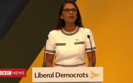 103462015 millerlibdem - Gina Miller tells Lib Dems she is not their 'leader-in-waiting'