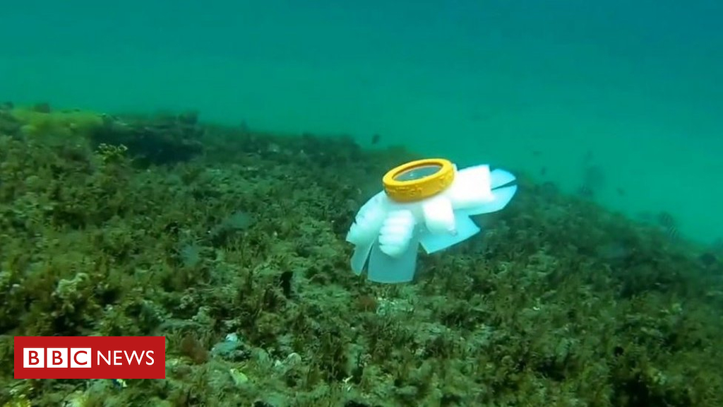 103498375 jellyrobot1 - Jellyfish robots to watch over endangered coral reefs