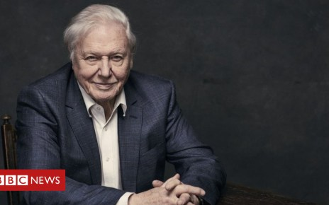 101695385 attenborough - Attenborough: 'Population growth must come to an end'