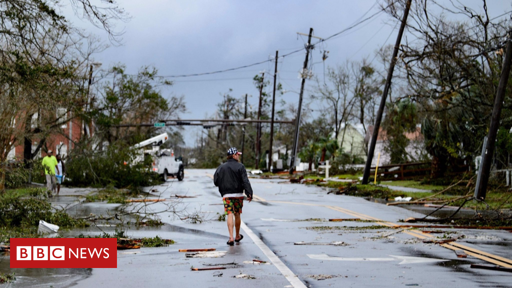 103811918 phpbpuznp 1 - Storm Michael's trail of devastation