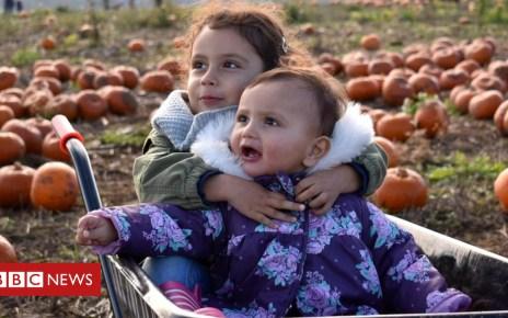 103972738 pumpkincute2 - You gotta pick a pumpkin or two