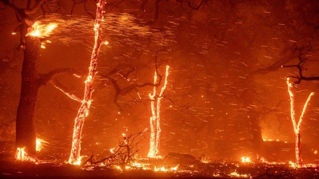 1541781267 884 Woolsey Fire California blaze advances on Malibu - California wildfires: Death toll rises to 25