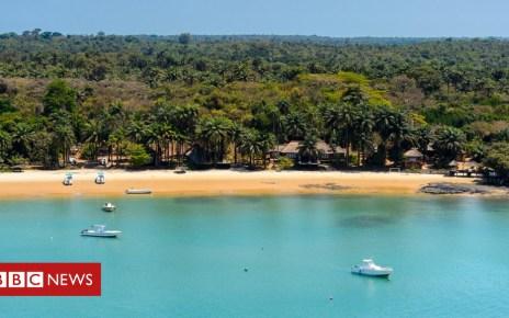 104194575 bijagos2 - The beautiful islands that could help stop killer diseases