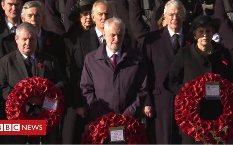 104269174 p06rfqdb - Armistice Day: Silence at the Cenotaph and tributes on beaches