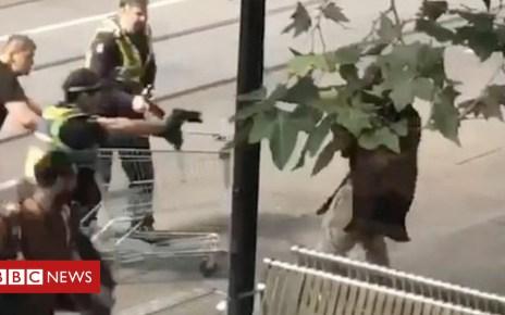 104269267 mediaitem104269263 - Trolley man: Funds flood in for Melbourne's homeless hero