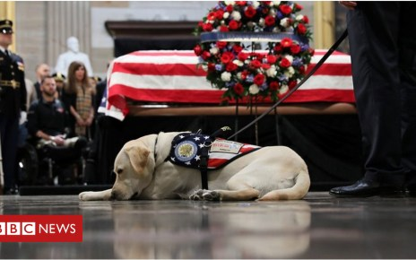 104603418 p06tnb58 - President George HW Bush: Sully visits coffin at US Capitol