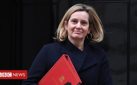104696805 hi050826526 - Brexit: 'Norway plus' a plausible Plan B, says Amber Rudd