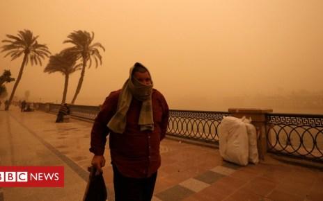 105213811 hi051685988 - In pictures: Cairo turns orange as sandstorm hits