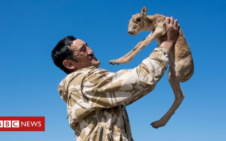 105243828 oaw 1774 976 - Ranger's death sparks Kazakh call for justice