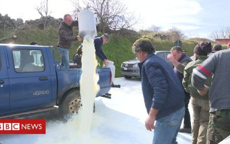 105600734 p070k5c2 - Italian farmers spill milk in protest at low prices