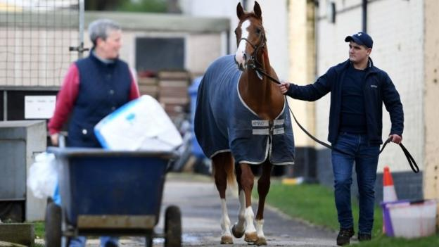 105608893 racing - Equine flu: British horse racing to resume after shutdown over virus
