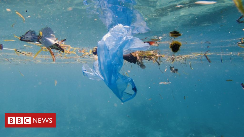 """105666553 gettyimages 1002940646 - BP: Plastic ban """"could have unintended consequences"""""""